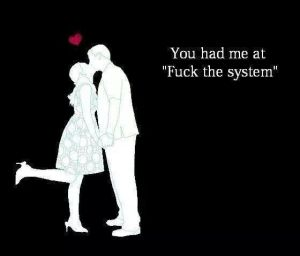 you had me at fuck the system