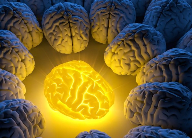 brain heal